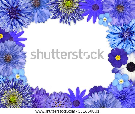 Flower Frame with Blue, Purple Flowers Isolated on White Background. Daisy, Chrysanthemum, Cornflower, Dahlia, Iberis, Primrose