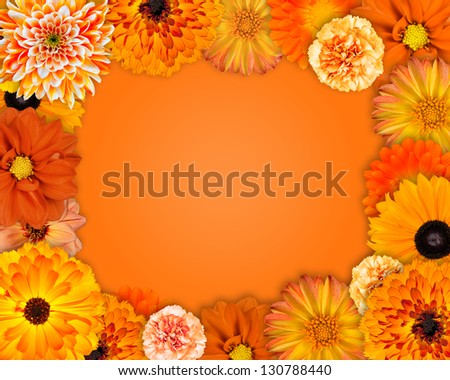 Flower Frame with Orange Flowers Isolated on Orange Background. Dahlia, Daisy, Chrysanthemum, Pot Marigold, Carnation