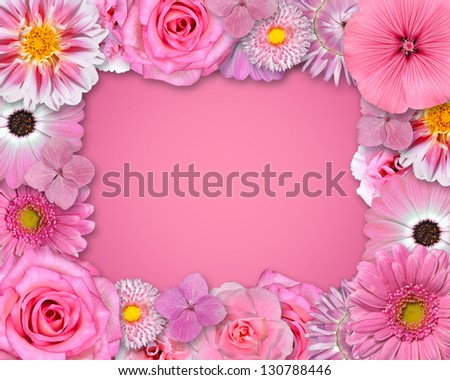 Flower Frame with Pink, Purple, Red Flowers Isolated on Pink Background. Selection of Nine Periwinkle, Rose, CornFlower, Lily, Daisy, Chrysanthemum, Dahlia, Carnation, Primrose Flowers