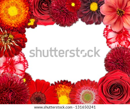 Flower Frame with Selection of Red Flowers with Isolated on White Background. Set of Daisy, Gerber, Marigold, Osteospermum, Chrysanthemum, Strawflower, Cornflower, Dahlia Flowers - stock photo