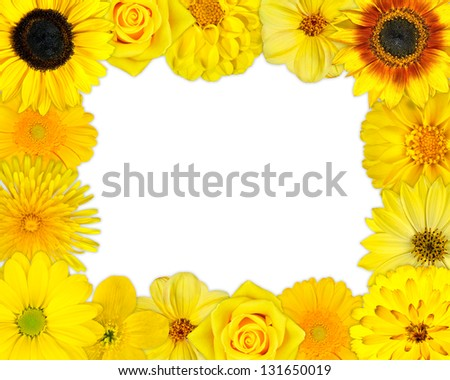 Flower Frame with Selection of Yellow Flowers with Isolated on White Background. Set of Daisy, Gerber, Marigold, Osteospermum, Chrysanthemum, Strawflower, Cornflower, Dahlia Flowers