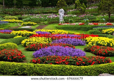 Flower garden in north of Thailand