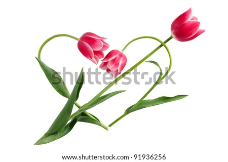 Flower idea for Valentine's day. Love arrow in heart