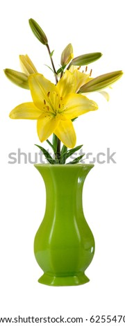 Flower in a vase isolated on white background
