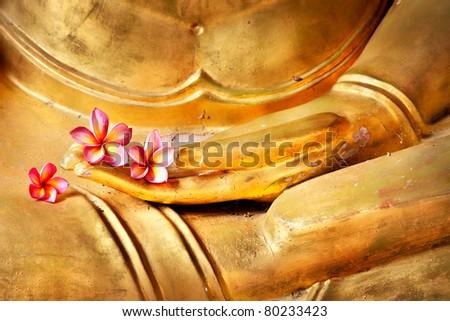 flower in hand image of buddha