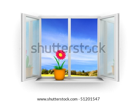 flower in pot on window frame