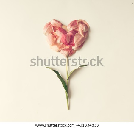 Flower in shape of a heart made of tulip petals. Love concept.