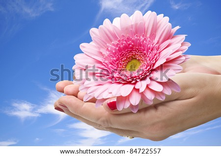 Flower in the hands in the sky background