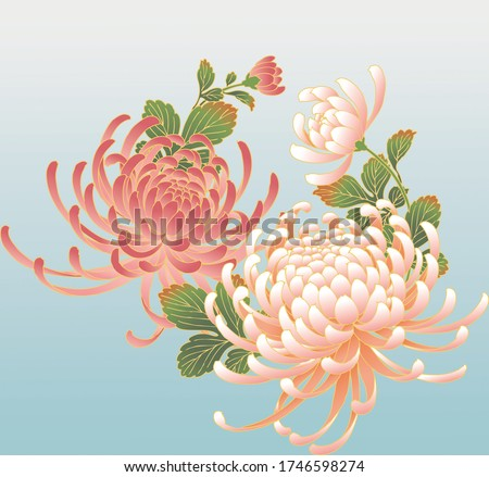 flower japan crisantemo illustration designe Foto stock ©