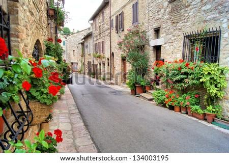 flower lined medieval street in ...