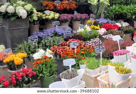 Flower market in Amsterdam, The Netherlands