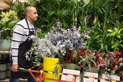 Flower market. Seller delivers potted flowers on a pushcart
