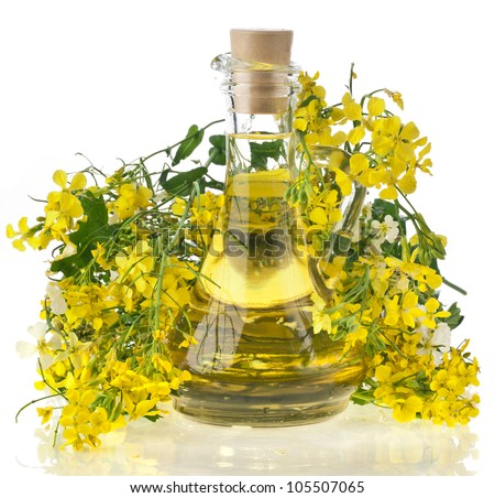 Flower of a rapeseed, Rape blossoms with bottle decanter oil, close up isolated  on white background