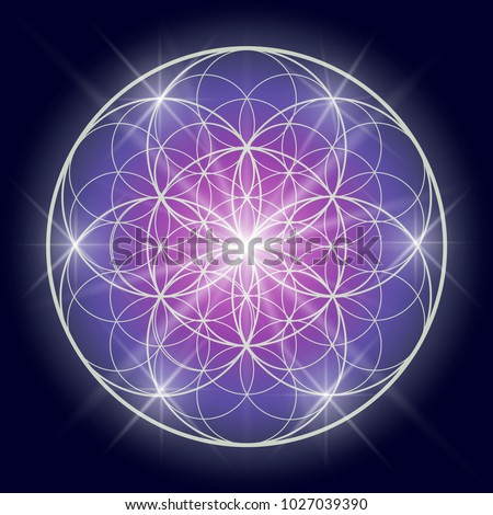 Flower of life or Pattern of Creation. Sacred geometry illustration.
