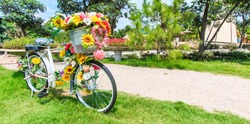 flower on a bicycle background lawn