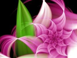 Flower on black - Digital art