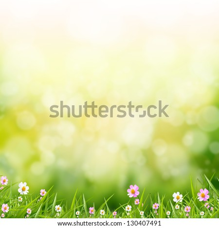 flower on green bokeh abstract light background