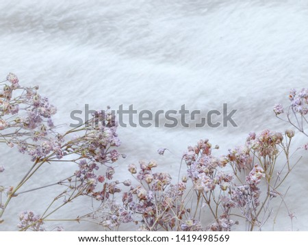 flower on soft cloth. Soft and smooth tone background. #1419498569