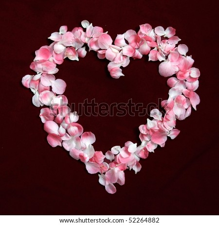 Flower Petals forming a heart shape ring against dark red background #52264882