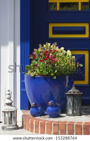Flower pot and decoration in front of a blue door
