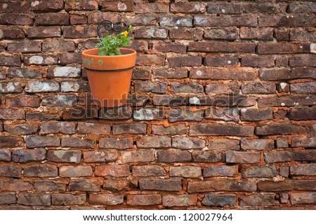 Flower pot on a brick wall