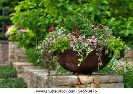 Flower pot or planter with geranium, calibrachoa (million bells), sweet potato vine, framing house entrance #54590476