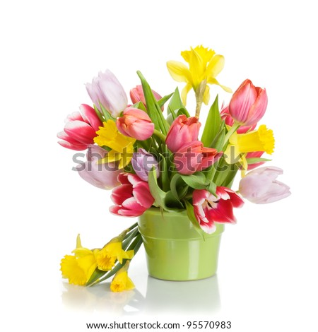 Flower pot with tulips and daffodils on white background