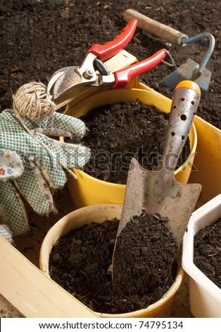 flower-pots - stock photo