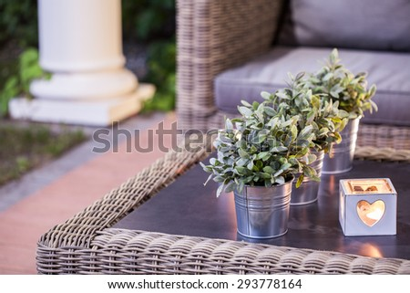 Flower pots and tealight on the table #293778164