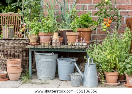 Flower pots with herbs and vegetables #351136556