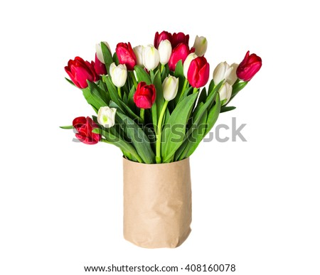 Flower. Red flower. Red & white tulip flower in a vase. Tulip flower isolated. Cute flower. Amazing flower. Color tulips flower. Colored flower. Sunny flower. perfect flower. Awesome flower. Flower