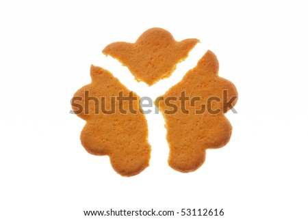 Flower shaped sugar cookie broken into three pieces, isolated on white, backlit.