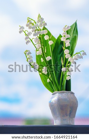 Flower Spring Lily of the Valley Background Vertical Close-up. Lily of the valley. Natural nature background with blooming beautiful flowers lilies of the valley lilies-of-the-valley.