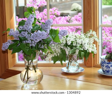Flower vases  sitting inside of  window - blooming shrubbery and spring scenery  outside of window.