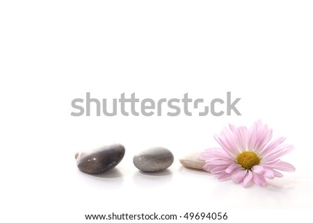 Flower with spa stones