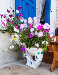 flowerbed  as the toilet.  toilet with flowers