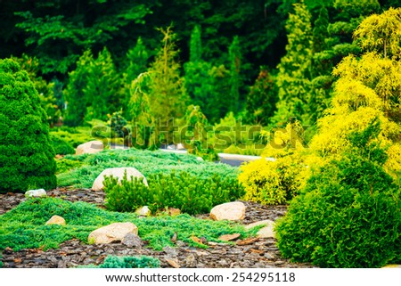Flowerbed, Small Green Trees And Cuted Bushes In Garden. Beautiful Summer Park. Landscaping. Garden Design