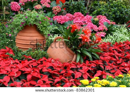 Flowerbed with gallipot - stock photo