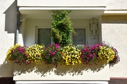 Flowered balcony in an apartment building