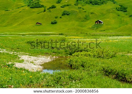 Flowered colored meadows in the alps of Austria, alpine wooded farmhouse in the middle of flower-strewn meadows. a sunny summer day with veil clouds in beautiful Bregenzerwald, Vorarlberg, Austria. Stock photo ©