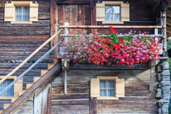 Flowering balcony on an old Alphus