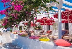 Flowering bougainvillea at restaurant on the beach of Mediterranean Sea
