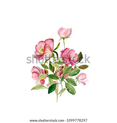Flowering branch of rose hips. #1099778297