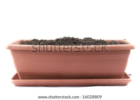 Flowerpot isolated on white Background .