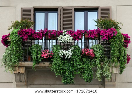 Flowerpots and house plants on the balcony