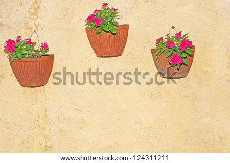 flowerpots with pink flowers hanging on a house wall