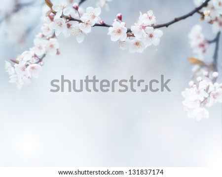 flowers #131837174