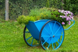 Flowers and Plants in Handcart