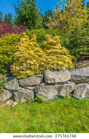 Flowers and stones in front of the house, front yard. Landscape design. Vertical.