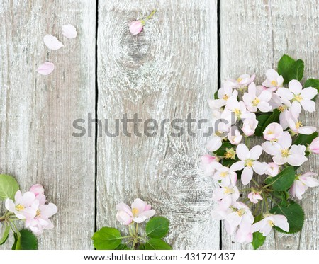 Flowers Apple Tree Blossoms Branches Of Blossom On Rustic Wooden Background With Copy